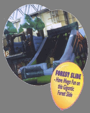 33ft inflatable slide