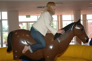 Rodeo horse ride in the centre of an inflatable bed